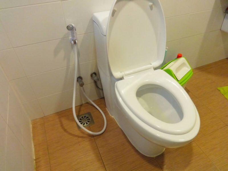 Привязанность к туалету