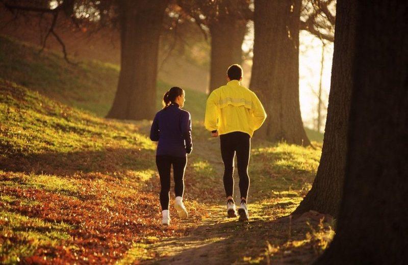 За сутки до сдачи анализа запрещается заниматься физической работой или спортом