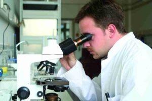 ureaplasma parvum в анализах