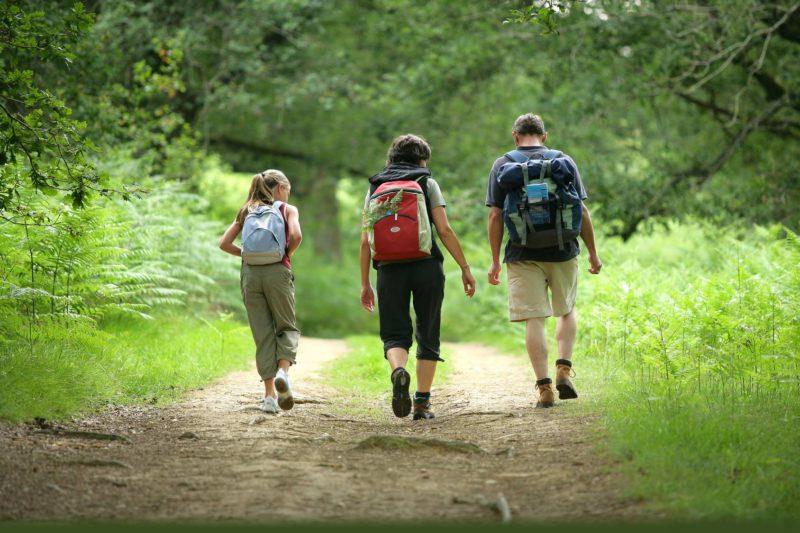 Уровень гемоглобина можно поднять пешими прогулками