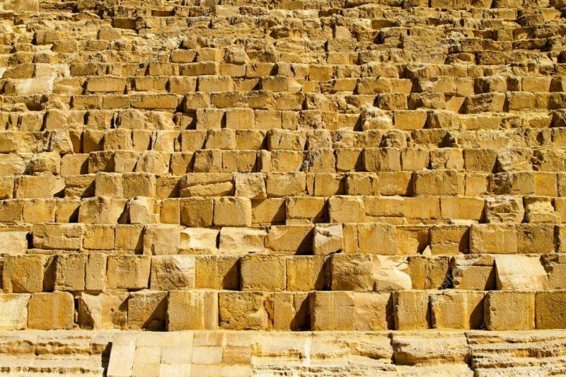 ВСАА служат строительными блоками, на основе которых будет построена мышечная масса.