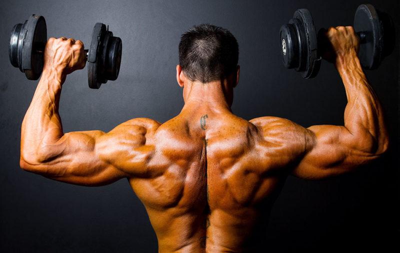 Упражнения с гантелями для плечевого сустава